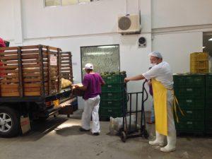 El Banco de Alimentos conmemora 17 años de labor social