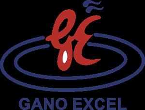GANO EXCEL
