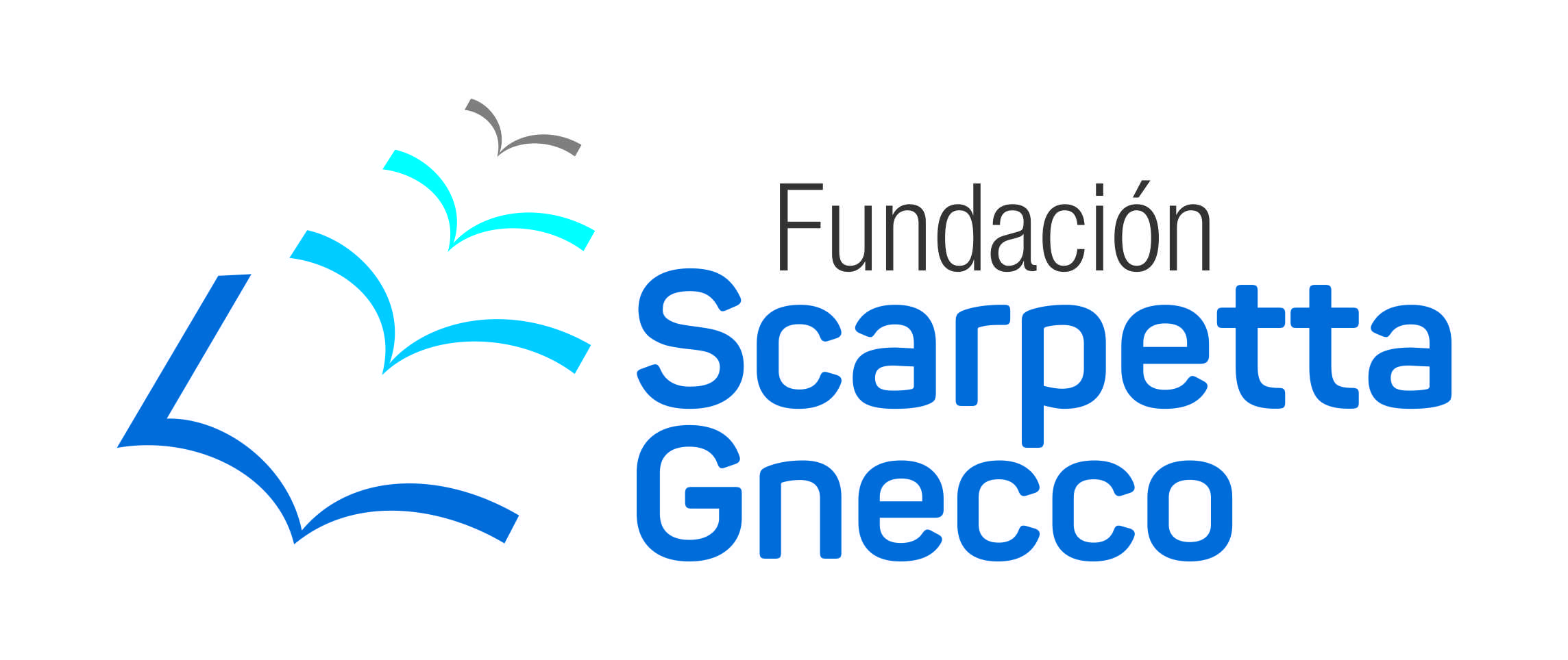 Fundación Scarpetta Gnecco