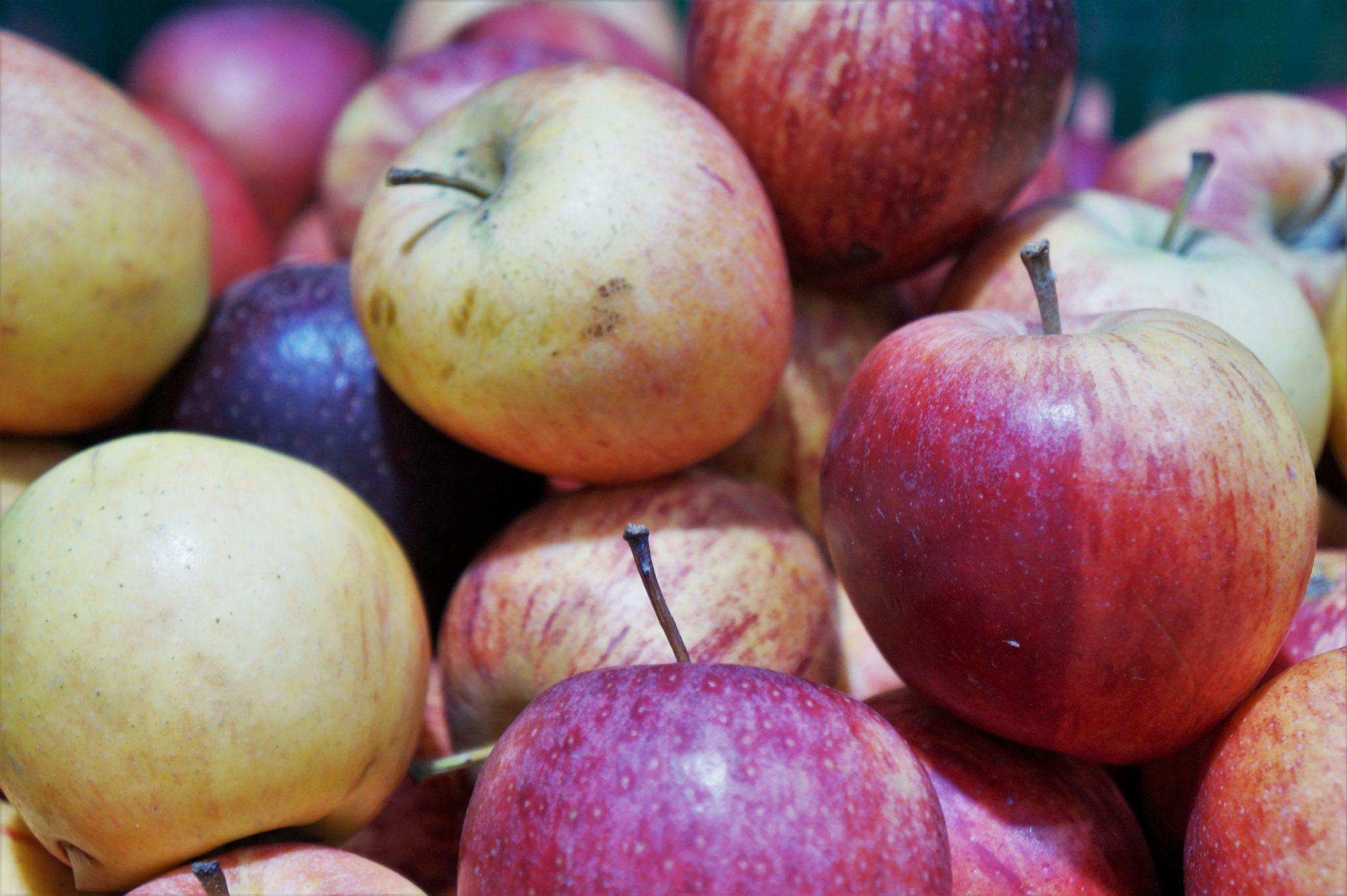 ¿Cómo cuidar frutas y verduras?