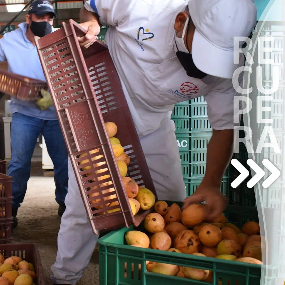 Lee más sobre el artículo Día Internacional de la Conciencia Sobre la Pérdida y el Desperdicio de Alimentos